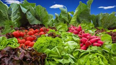 Медики навали продукты, содержащие больше всего нитратов