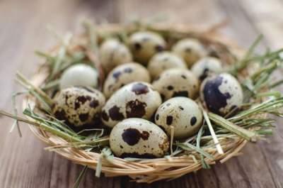 Врачи предупредили о вреде перепелиных яиц