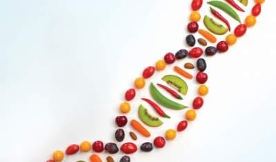 Эксперты прокомментировали эффективность индивидуальных ДНК-диет
