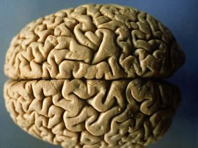 Ученые выяснили, как стареет мозг